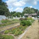 Sonnenberg Mansion Garden in the Finger Lakes