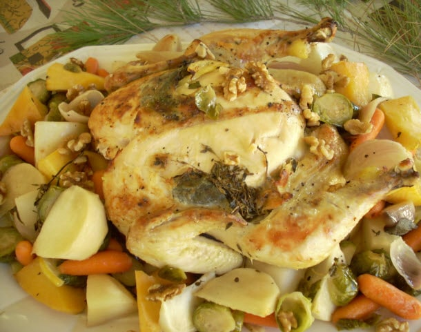 Baby Boomster Recipes   Chicken   Lemon Chicken with Herbs and Root Veggies