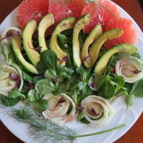 Grapefruit Fennel Avocado Salad