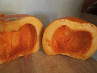 Pumpkin Scooped