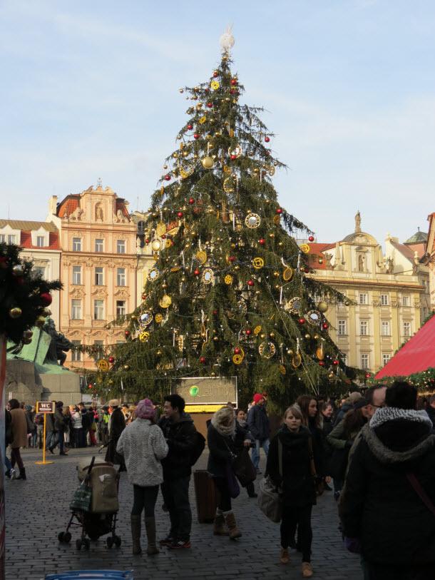 Wenceslas Square - Christmas Tree - Prague