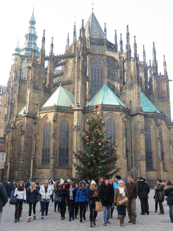 Prague Cathedral with Christmas tree