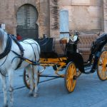 Baby Boomer Travel | Seville, Spain | Horse and Carriage