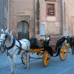 Baby Boomer Travel   Seville, Spain   Horse and Carriage
