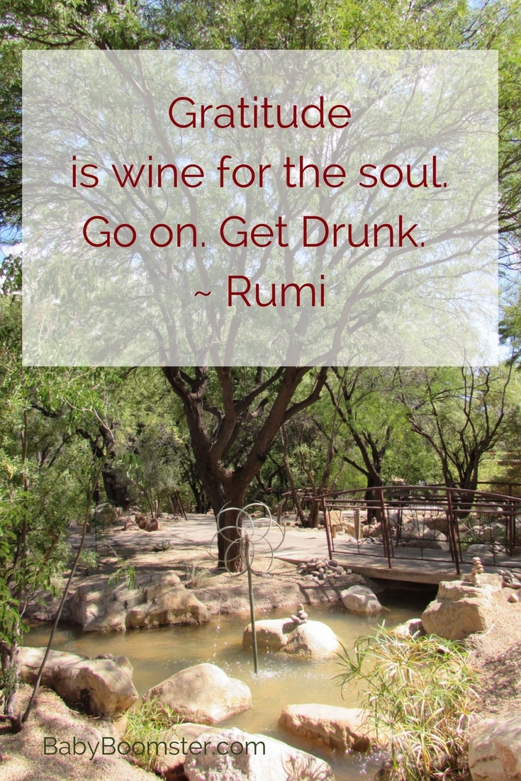 Baby Boomer Women   Quotes   Gratitude - Rumi