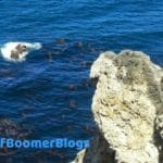 Inspiring posts written by #babyboomer #bloggers about life, love, food, travel and whatever inspires us. #bestofboomerblogs #babyboomerbloggers