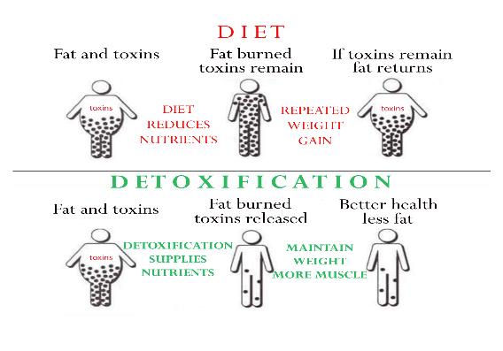 Detox Diet comparison - EasyDetox