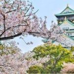 The Castle of Osaka Japan