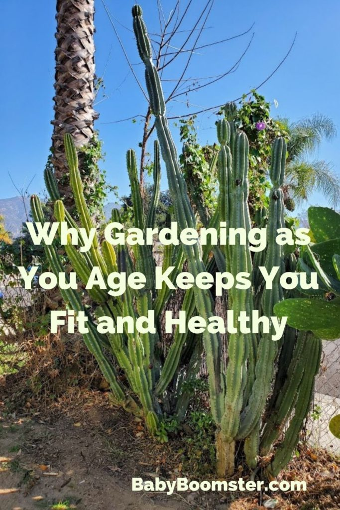 Gardening for Baby Boomers and seniors