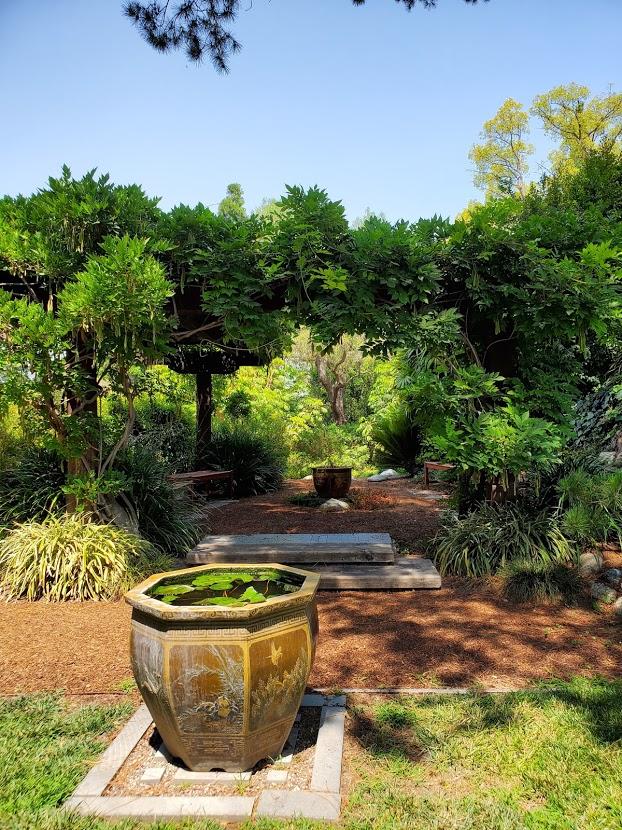 Mother Center Water Lily Vase SRF
