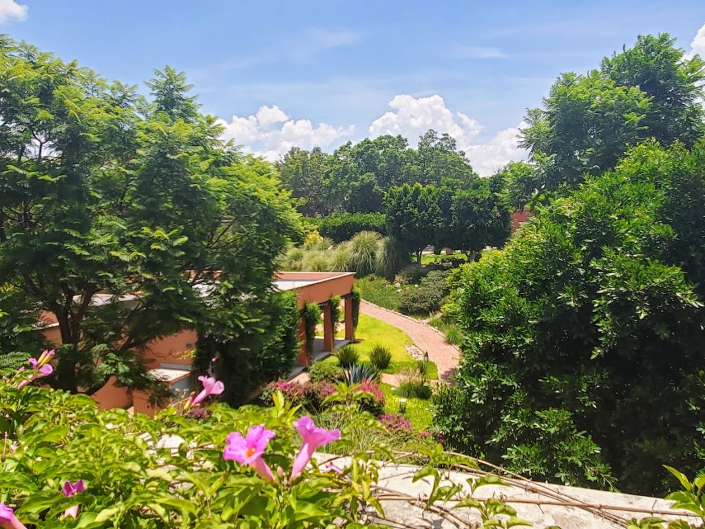 Garden view from a room at the Rosewood Hotel in San Miguel de Allende