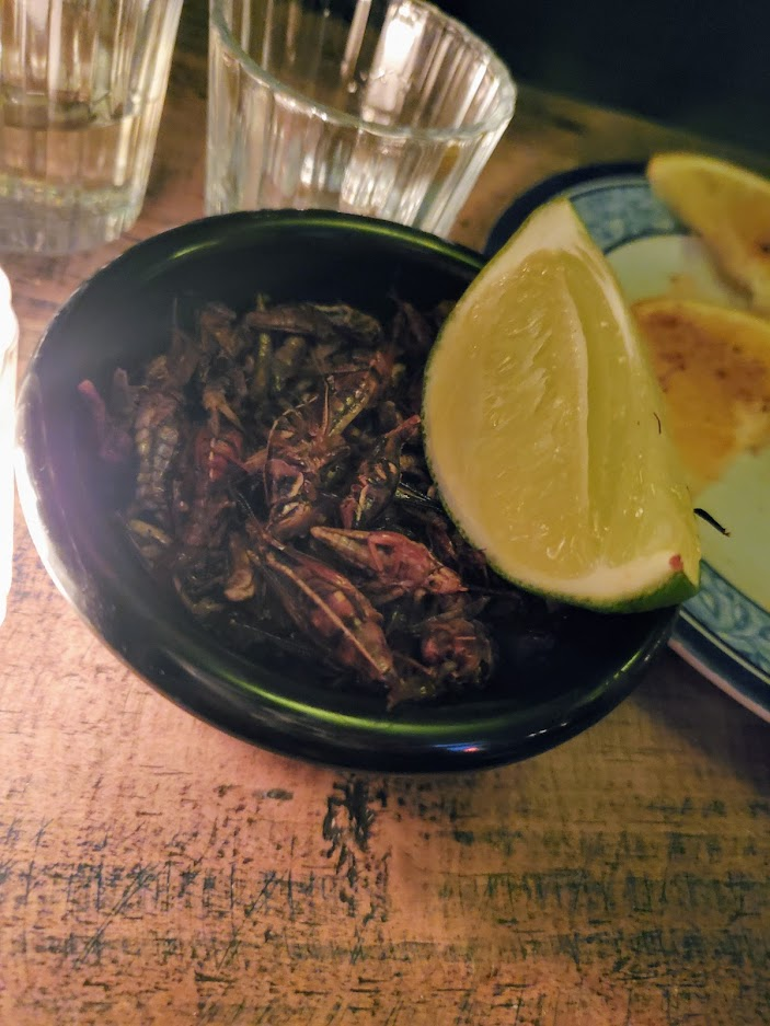A bowl of fried crickets from a bar in Mexico city with Mescal shots.