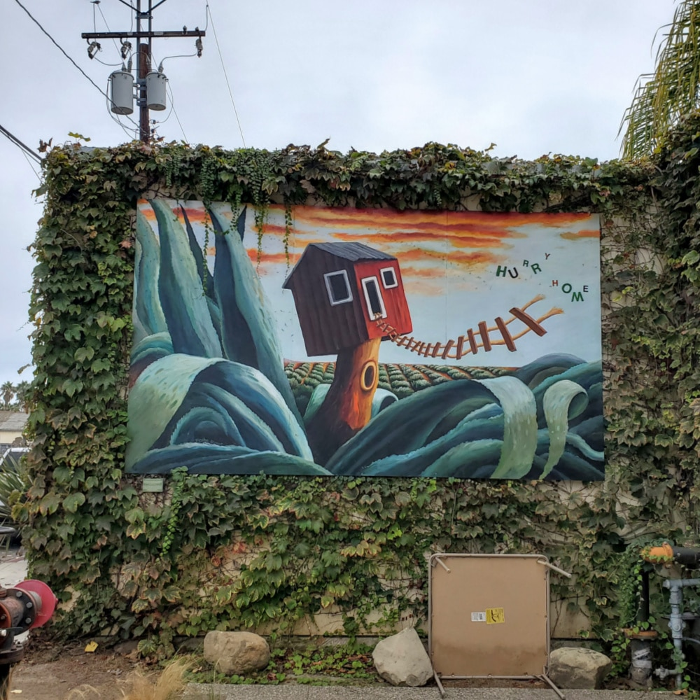 Hurry Home Mural Funk Zone